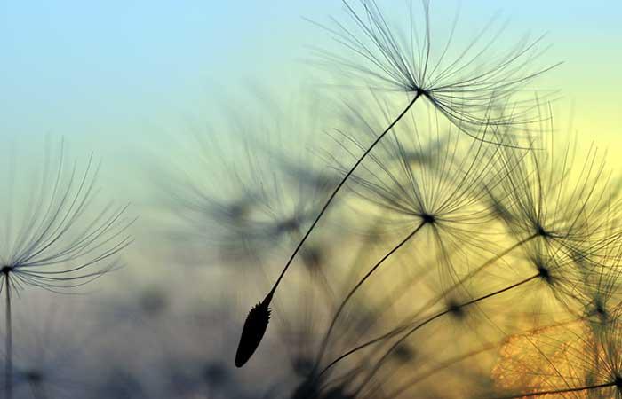 Meditation & Relationship