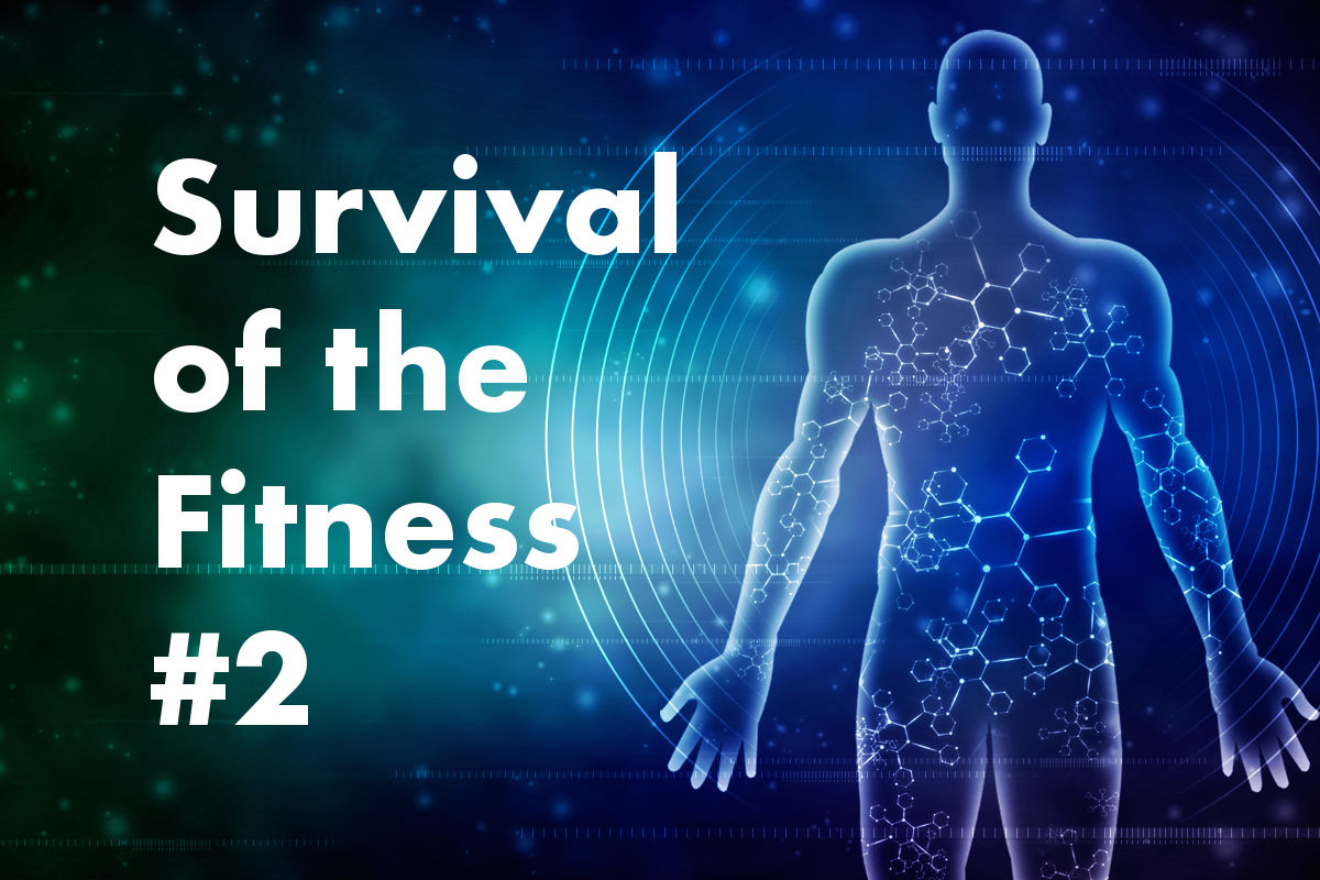Survival of the Fitness 2